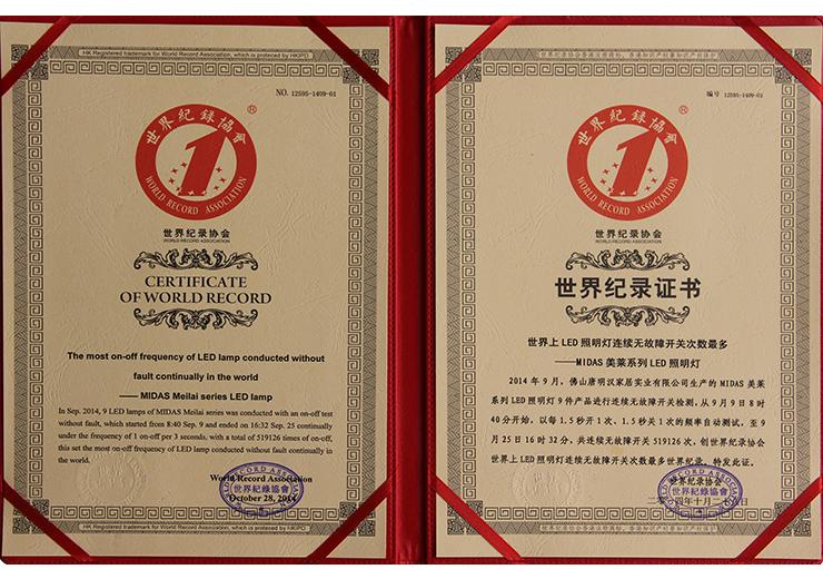 LED灯世界纪录证书